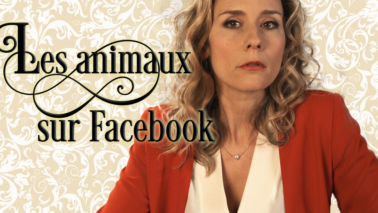 Les animaux sur Facebook selon Florence Champagne
